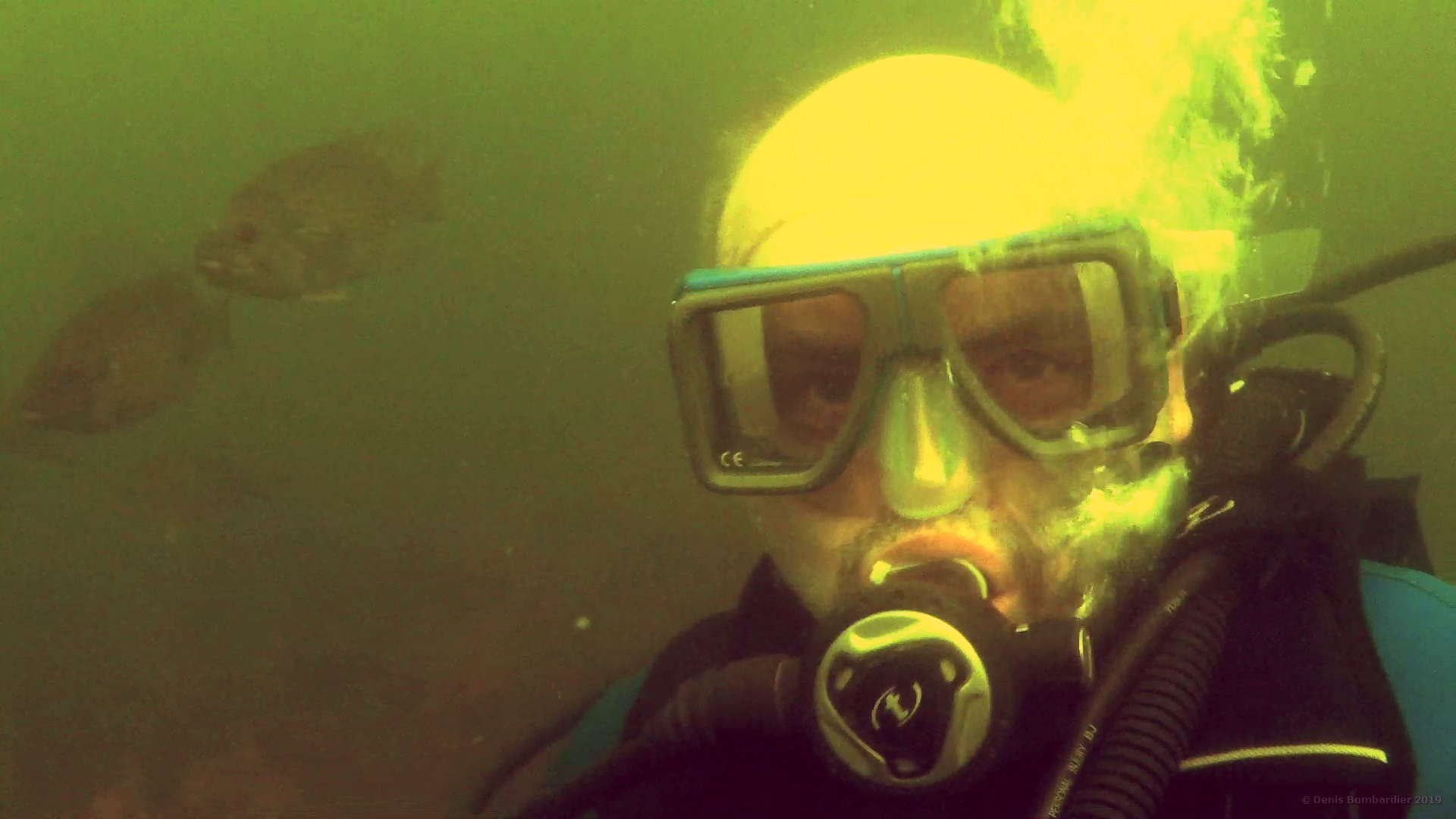 Plongée sous-marine-Memphrémagog